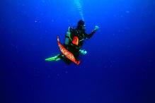 Jean-Yves Bignoux /Underwater Photographer /Oceanic Research /Scuba Instructor