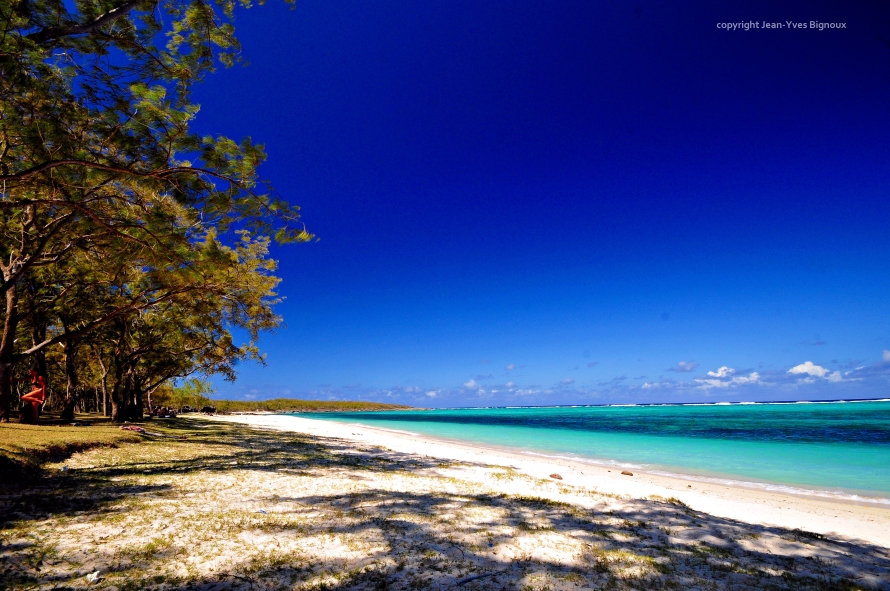d300 Mauritius 2 286