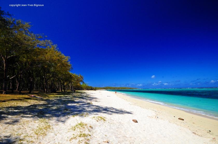 d300 Mauritius 2 287