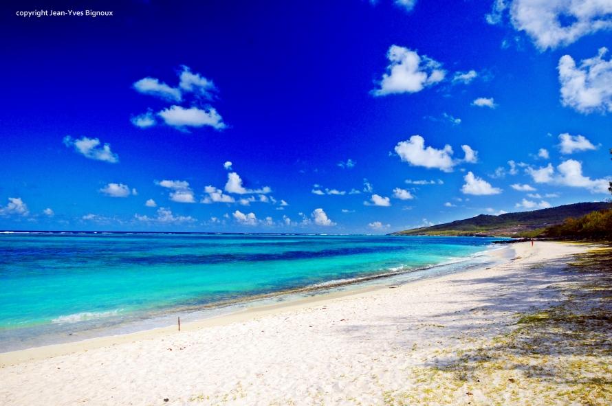 d300 Mauritius 2 388