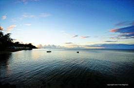 d300 Mauritius 2 498