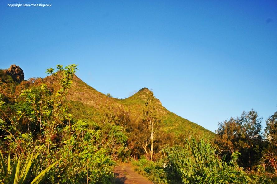 Nikon d300 Mauritius 010