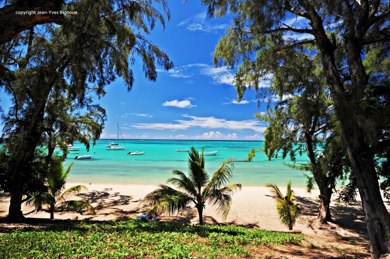 Nikon d300 Mauritius 063