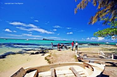Nikon d300 Mauritius 075