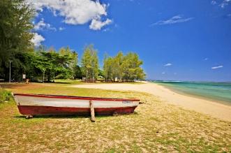 Nikon d300 Mauritius 166