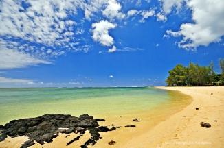 Nikon d300 Mauritius 170
