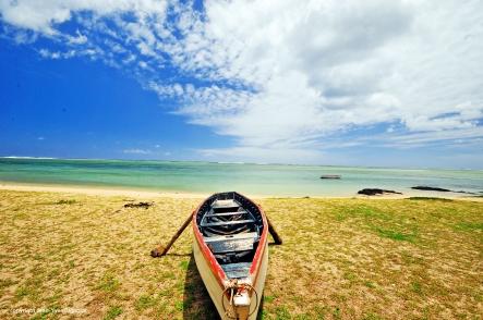 Nikon d300 Mauritius 180