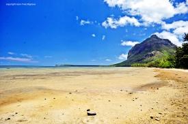 Nikon d300 Mauritius 402
