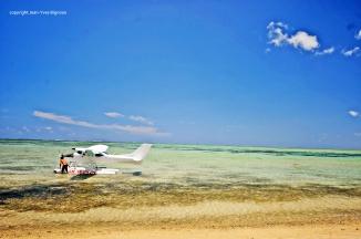 Nikon d300 Mauritius 426