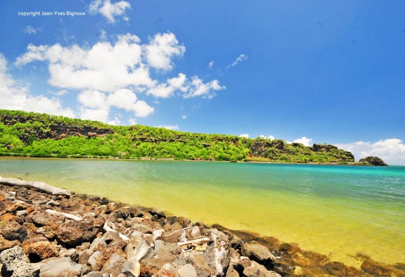 Nikon d300 Mauritius 467