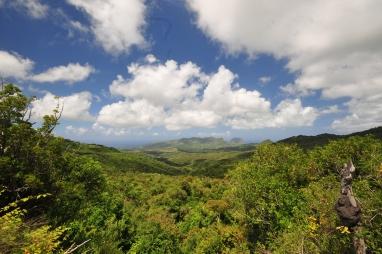 Nikon d300 Mauritius 492