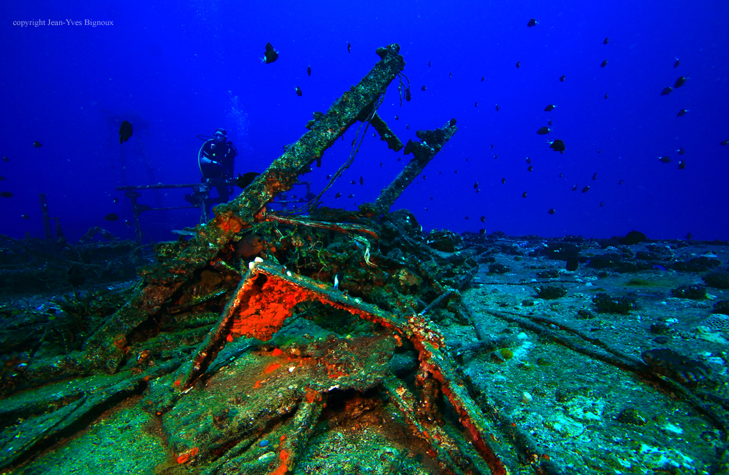 maxy dive and shipwreck 065 copy