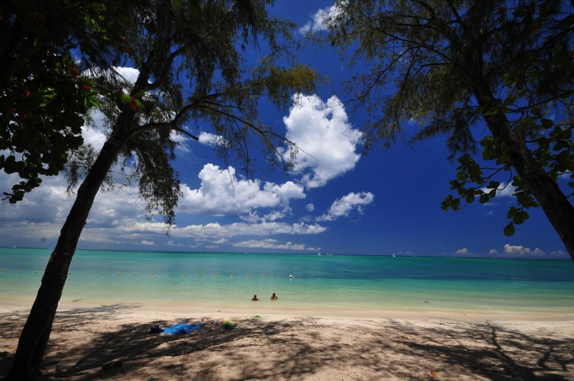 Nikon d300 Mauritius 037