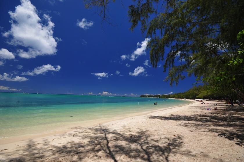 Nikon d300 Mauritius 040