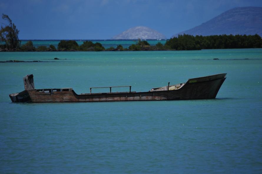 Nikon d300 Mauritius 059