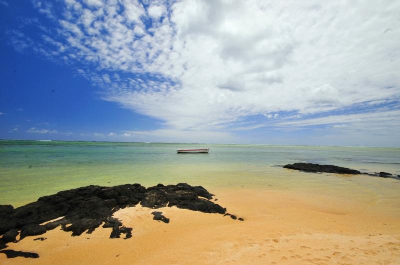 Nikon d300 Mauritius 169