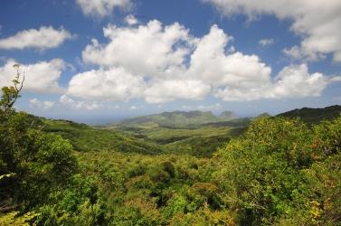 Nikon d300 Mauritius 493