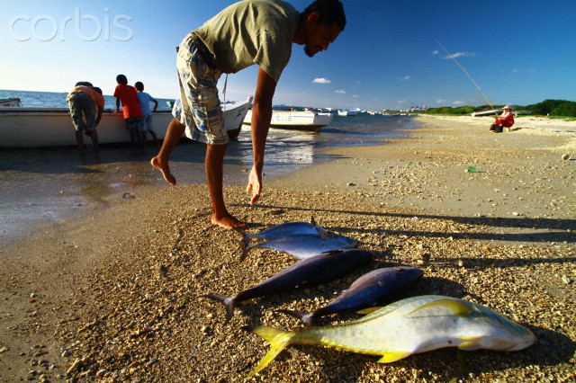 Mauritius fishing zone becoming depleted by European ships