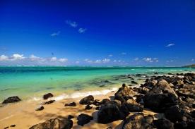 d300 Mauritius 2 307