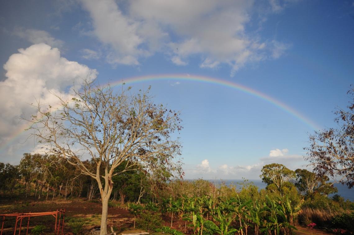 d300 Mauritius 2 269