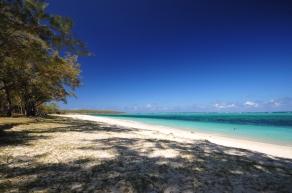 d300 Mauritius 2 284