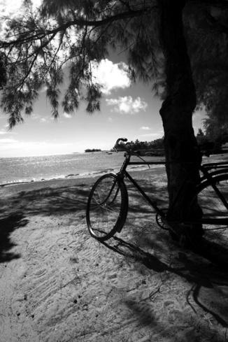 island scenic 150 copy