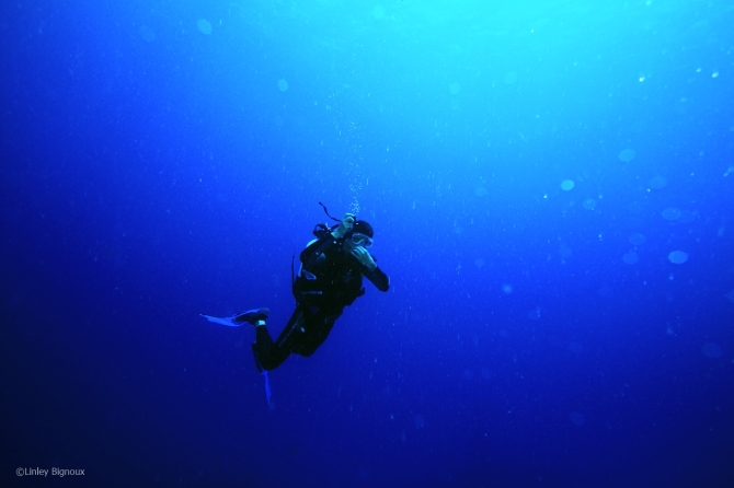 epave azuma maru 131