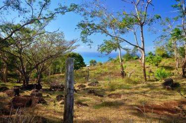 Rodrigues 2019 October 416
