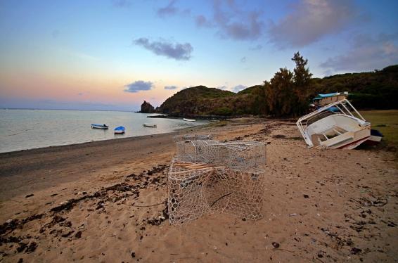 Rodrigues 2019 October 433